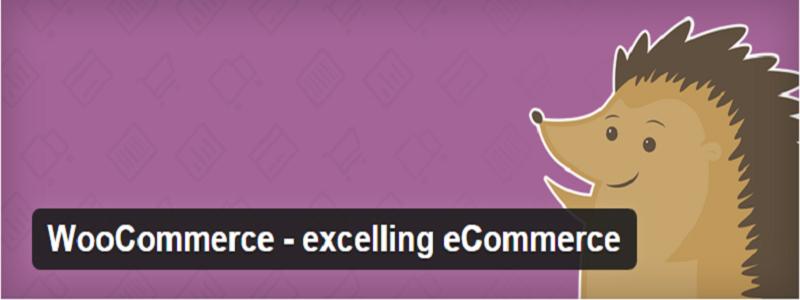 أنشئ متجرك الالكتروني مع Woo Commerce